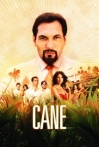 Watch Cane Online for Free