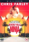 Watch Beverly Hills Ninja Online for Free