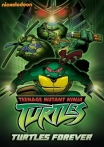 Watch Turtles Forever Online for Free