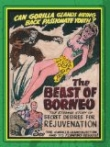 Watch Beast Of Borneo Online for Free