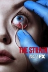 Watch The Strain Online for Free