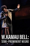 Watch W. Kamau Bell: Semi-Promenint Negro Online for Free