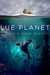 Watch Blue Planet II Online for Free