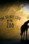 Watch The Secret Life of the Zoo Online for Free